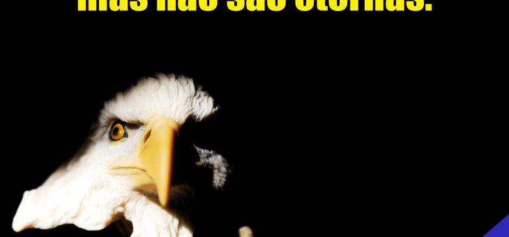 A águia também padece